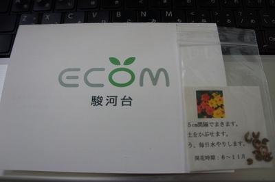 ECOM写真DSC03632.jpg